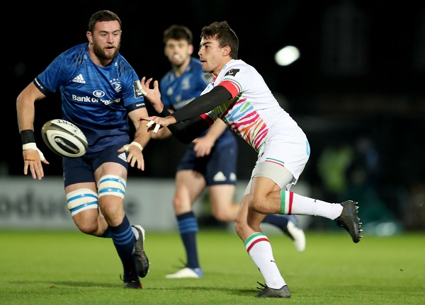 Leinster Zebre Casilio